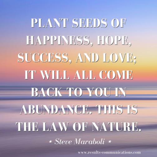 Steve-Maraboli-quote-15-2019